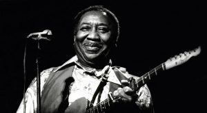 muddy waters tonight